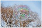 Bubble maker#11