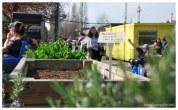 Urban farm #02