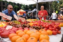 Brooklyn - Fort Green Park Market #02