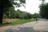 Central Park #03