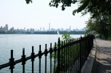 Central Park #04