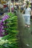 Flower market #05